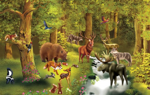 Puzzle Nivel 4: Animales del bosque | Recurso educativo 34316