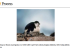 Webquest: Penguins | Recurso educativo 34888