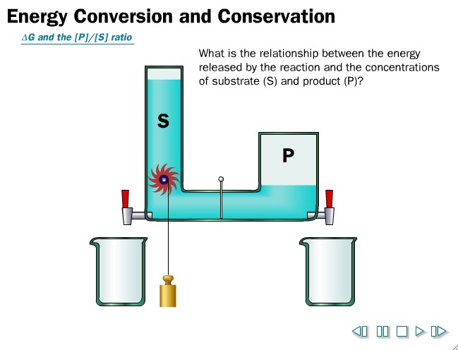Video: Energy Conversion and Conservation, the water wheel | Recurso educativo 39948