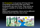 Habitats and ecosystems | Recurso educativo 40397
