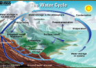 Webquest: The water cycle | Recurso educativo 43017