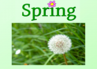Spring: what happens? | Recurso educativo 46800