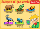 Animals of the world | Recurso educativo 47811