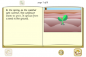Life cycle of a sunflower | Recurso educativo 25491
