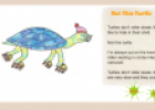 Not this turtle | Recurso educativo 66513