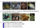Invertebrates quiz | Recurso educativo 67587