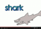 Video: Sea animals talking flashcards | Recurso educativo 69164