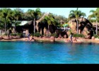 Sea World Imagine Dolphin Show | Recurso educativo 97379