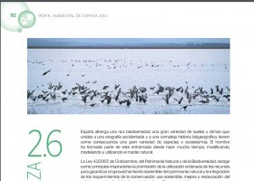 Naturaleza | Recurso educativo 741833